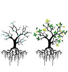 tree for you design vector image vector image