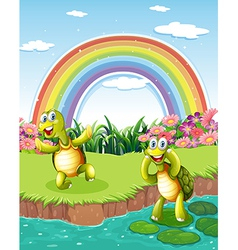 Two playful turtles at the pond with a rainbow in vector image