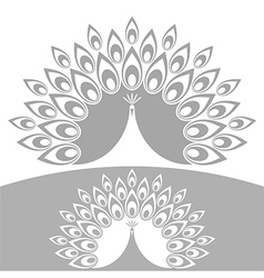 Abstract peacock vector image