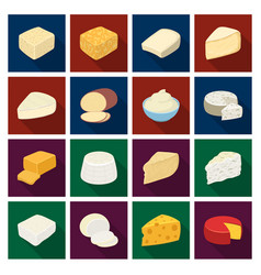 Different types of cheese different types of vector