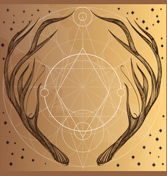 hand drawn deer antlers with geometric ornament vector image