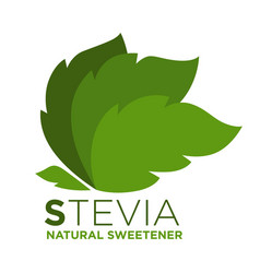 Stevia natural sweetener green leaf with vector