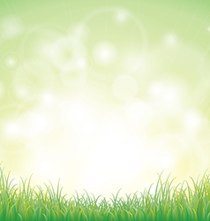 Green grass with background vector