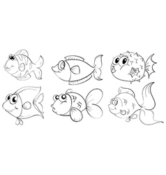 Fish sketches vector