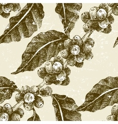 hand drawn seamless pattern with coffee pant vector image
