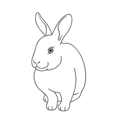 gray rabbitanimals single icon in outline style vector image vector image