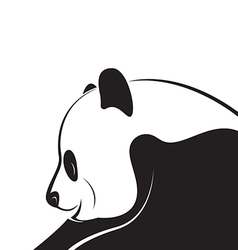 Panda design vector image vector image