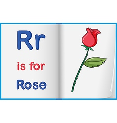 A picture of a rose in a book vector image