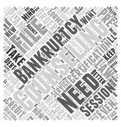 Bankruptcy counseling word cloud concept vector