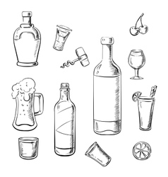 Alcohol drinks wine bottles and cocktails vector