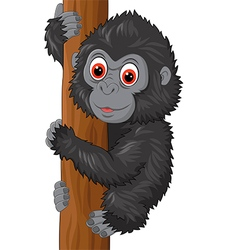 Cute baby gorilla climbing tree vector
