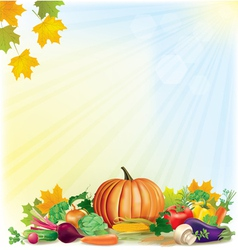 Autumn harvest background vector image vector image