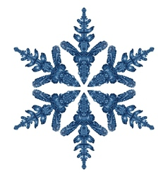 Blue Snowflake Isolated On White Background vector image vector image