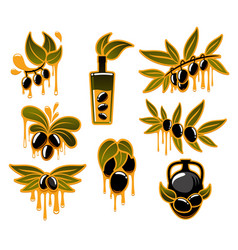 Olive icons for olive oil poducts vector