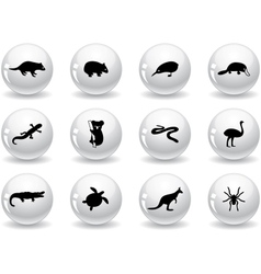 Web buttons australian animal icons vector image vector image