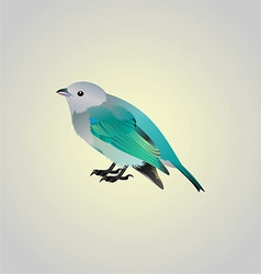 Blue birdy vector