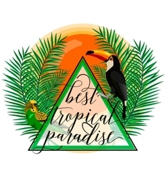 tropical paradise card with vector image