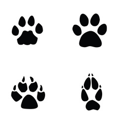 Cat jaguar dog fox footprint vector
