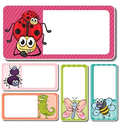 Different insects on square labels vector image