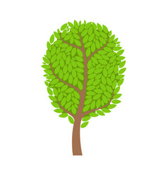 Green summer tree element of a landscape vector