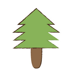 Pine tree natural forest vector