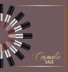 template banner design for cosmetic sale vector image