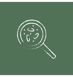 Microorganisms under magnifier icon drawn in chalk vector