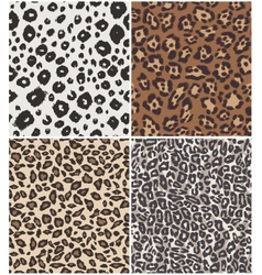 animal skin pattern vector image
