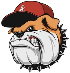Ferocious bulldog head vector