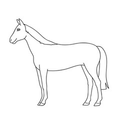 Horseanimals single icon in outline style vector