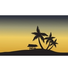 Palm trees sunset golden of silhouette vector