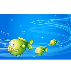 Three green piranhas under the sea vector image vector image
