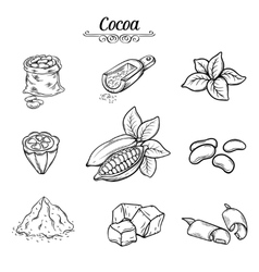 set decorative cocoa chocolate vector image