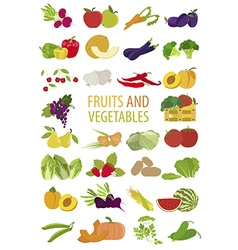 Fruits and vegetables nutrition icon set vector