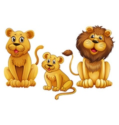 Lion family with one cub vector image