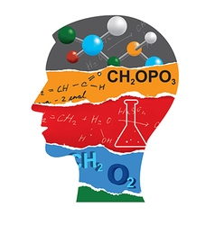 Chemistry student head silhouette vector image