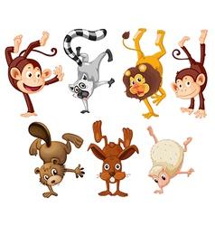 Different animals doing handstands vector