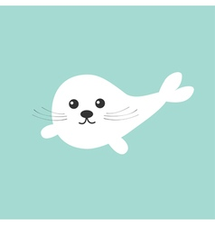 Harp baby seal pup with mustaches Cute cartoon vector image vector image