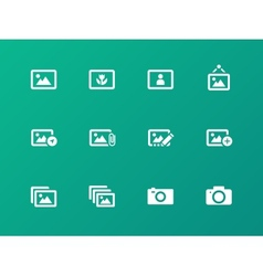 Photographs and Camera icons on green background vector image vector image