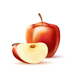 Realistic red apple fruit slice 3d isolated vector
