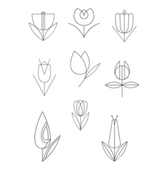 Line flower decor set vector