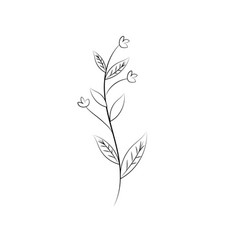 Line rustic branch with leaves and flowers vector