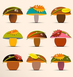 Mushrooms collection mushroom set with rain drops vector