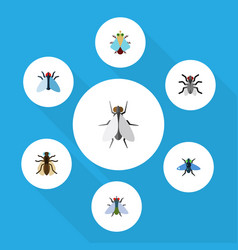 Flat icon buzz set of tiny hum mosquito and vector