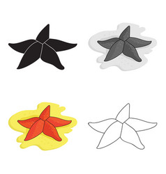 seastar icon in cartoon style isolated on white vector image vector image