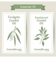 Set of 2 labels with eucalyptus and sandalwood vector