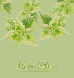 Green leaf on green backgroundlove nature concept vector