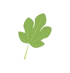 Fig leaf icon vector