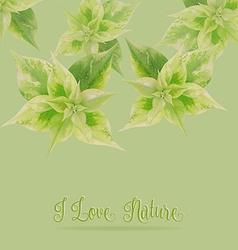 Green leaf on green backgroundlove nature concept vector image vector image