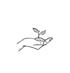 human hand with sprout hand drawn sketch icon vector image
